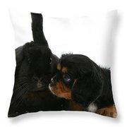 Spaniel And Rabbit Throw Pillow