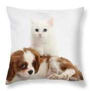 Spaniel Puppy And Kitten Throw Pillow