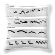 Spectrograms Throw Pillow