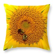 Spider And The Bees Throw Pillow