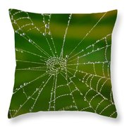 Spiderweb With Dew Drops Throw Pillow