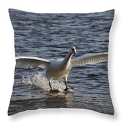 Splashdown - Water Skiing Throw Pillow
