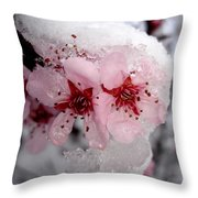 Spring Blossom Icicle Throw Pillow