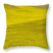 Spring In Spain Throw Pillow