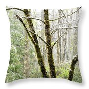 Spring Snow Along Williams River Scenic Byway Throw Pillow