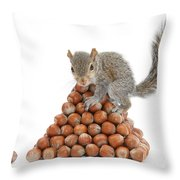 Squirrel And Nut Pyramid Throw Pillow