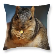 Squirrel Eating Corn Throw Pillow