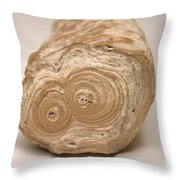 Stalactite Throw Pillow