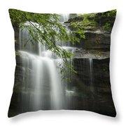 Standing Rock Falls Throw Pillow