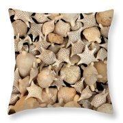 Star Sand Foraminiferans Throw Pillow