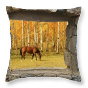 Stone Window View And Beautiful Horse Throw Pillow