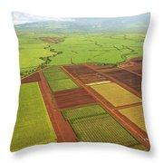 Sugar Cane Fields Throw Pillow