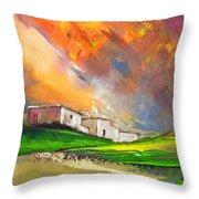 Sunset 25 Throw Pillow