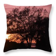 Sunset Throw Pillow by Saifon Anaya