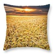 Sunset Wheat Throw Pillow
