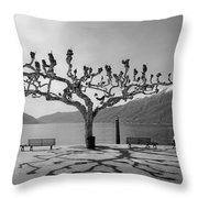 sycamore trees in Ascona - Ticino Throw Pillow