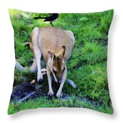 Symbiotic Relationship Throw Pillow