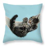 Tabby Kitten In Hammock Throw Pillow