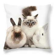 Tabby-point Birman Cat And Rabbits Throw Pillow