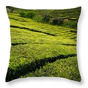 Tea Gardens Throw Pillow