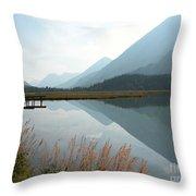 Tern Lake Throw Pillow