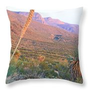 The Colors Of Evening Throw Pillow