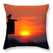 The Early Bird Throw Pillow