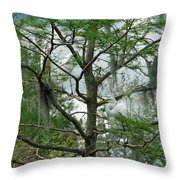 The Mating Dance II Throw Pillow