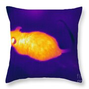 Thermogram Of A Mouse Throw Pillow