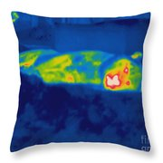 Thermogram Of A Tiger Throw Pillow