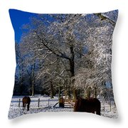 Thoroughbred Horses, Mares In Snow Throw Pillow by The Irish Image Collection