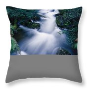 Time Lapse Of Taggerty River Flow Throw Pillow