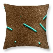 Tobacco Mosaic Virus, Tem Throw Pillow