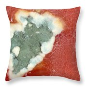 Tomato Juice 2 Throw Pillow