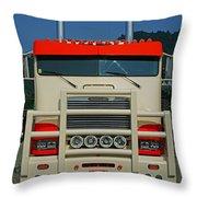 Tr0272-12 Throw Pillow