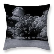 Trees At The Carabobo Field Throw Pillow