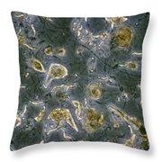 Trichonympha Throw Pillow