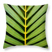 Tropical Palm Frond Throw Pillow