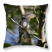 Tufted Titmouse Throw Pillow