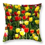 Tulip Garden University Of Pittsburgh  Throw Pillow by Thomas R Fletcher