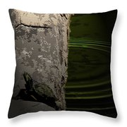 Turtle Enjoying The Sun Throw Pillow
