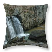 Turtle In The Rocks Throw Pillow