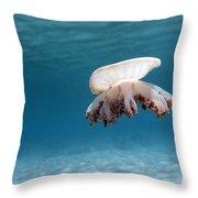 Upside Down Jellyfish In Caribbean Sea Throw Pillow