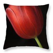 Valentine Tulip Throw Pillow