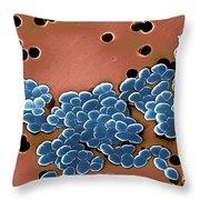 Vancomycin Resistant Enterococci Throw Pillow