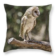 Vantage Point V4 Throw Pillow