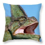 Veiled Chameleon Chamaeleo Calyptratus Throw Pillow by Ingo Arndt