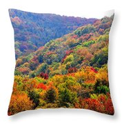 View Along The Highland Scenic Highway Throw Pillow