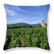Vineyard. Regnie-durette. Beaujolais Wine Growing Area. Departement Rhone. Region Rhone-alpes. Franc Throw Pillow