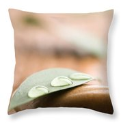Water Drops On Leaf Throw Pillow